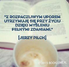 Jerzy Pilch, Dziennik II