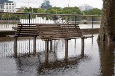 waterlogged benches