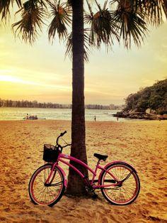 Palm Tree, warm breeze