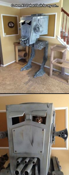 Cat playhouse level: Star Wars.