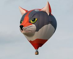 A cat ballon on the air at the Warsteiner International Hot Air Balloon Show in the Arnsberger Forest National Park on September 2011 near Warstein, Germany. Air Balloon Rides, Hot Air Balloon, Crazy Cat Lady, Crazy Cats, Balloon Show, Cat Balloon, Expo 67 Montreal, Air Ballon, Big Balloons