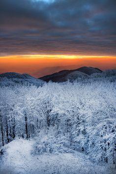 真冬の朝日