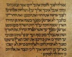 Scoperto alla Biblioteca dell'Università di Bologna il più antico Sefer Torah trattasi dei cinque Libri della Bibbia dalla Genesi alla.........