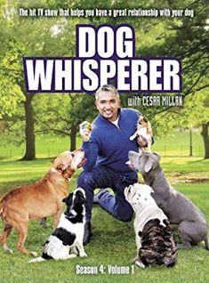 Dog Whisperer With Cesar Millan: Season 4 Vol. Dog Training Techniques, Dog Training Tips, Cesar Millan Puppy Training, Dog Body Language, National Geographic Channel, Dog Whisperer, New Puppy, Season 4, Dog Care