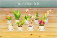 LinaCherie: Clutter-a-holic-plants