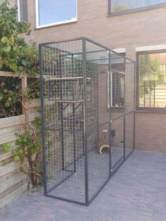 Diy Cat Enclosure, Dog Enclosures, Outdoor Cat Enclosure, Outdoor Cat Cage, Outdoor Cats, Cat Cages, Bird Cages, Big Bird Cage, Animal Tatoos