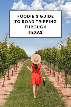 I've lived in Texas for almost my entire life but I've only explored a little bit of the Lone Star state. Here are some of road trip suggestions for foodies in Travel Texas! #TexasToDo #LetsTexas #ad #TexasTravel Austin, Salado, Fredicksburg, Plano, Corpus Christi Texas Travel, Corpus Christi, Weekend Getaways, Life Is Beautiful, Places To Go, Road Trip, Explore, Texas, Life Is Good