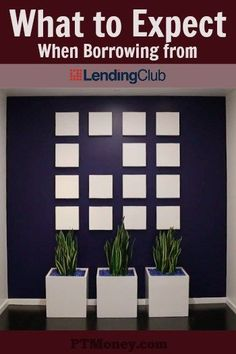 What to Expect When Borrowing from Lending Club http://itz-my.com