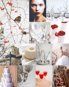 Mood: winter chic  Palette: cool white, red, gray-brown