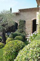 Reportage jardin provençal   nathalie pasquel l gardens and plants photos