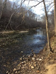 LIVE WATER! 255 M/L acres with a springs feeding the Bryant creek with trout fishing! Pond, woods and BEAUTIFUL bottom ground. Privately located! in Mansfield MO