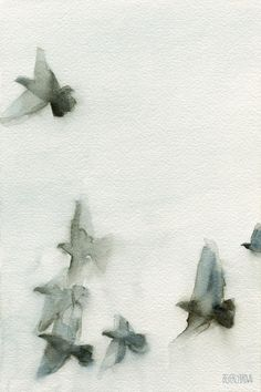 A Flock Of Pigeons 1 Watercolor Painting Of Birds - Beverly Brown