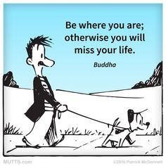 How will you slow down today? #MUTTSManifesto