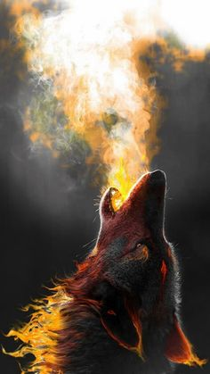 Love this the combination of wolf and Fire! Even a wolf can be Firey so can you Dragon . Iphone Wallpaper Wolf, Tier Wallpaper, Animal Wallpaper, Iphone Wallpapers, Wallpaper Wallpapers, Cool Wallpapers Wolf, Iphone Backgrounds, Computer Wallpaper, Wolf Tattoos