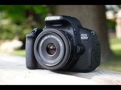 I want this as our second camera - Canon EOS 650D / Rebel T4i Review Preview