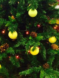 christmas padel tree 2014-15