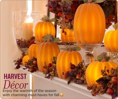 Harvest Decor from Valerie Parr Hill