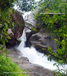 best resort in wayand Kerala >> resort in wayanad --> http://orchardholidayresort.com