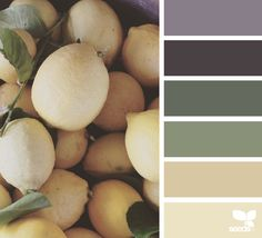 Fresh Tones - http://www.design-seeds.com/edible-hues/fresh-tones-2