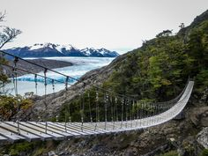 The hanging bridges of Torres del Paine National Park are awesome! The third one, of 56 meters long, promises the best reward: spectacular views of the Gray Glacier. Would you dare? Latin America, South America, Torres Del Paine National Park, Iguazu Falls, Machu Picchu, Bridges, Trekking, Patagonia, Third