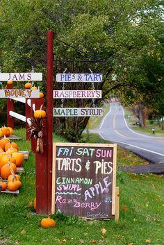 Tuckerman Farms, Cayuga County, Finger Lakes NY