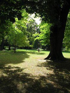 Christchurch, New Zealand   THE MOSAIC FINGERPRINT