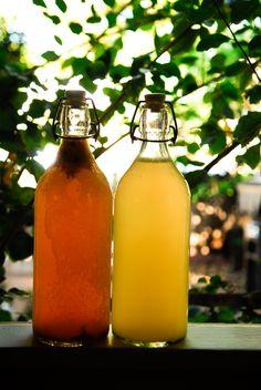 Try drinking Kombucha tea beverages to help deliver antioxidants and probiotics.