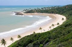 "Tabatinga Beach, Paraíba, Brazil. Tabatinga has a beautiful landscape with reefs, clear waters and the ""maceiós"" natural saline lagoons."