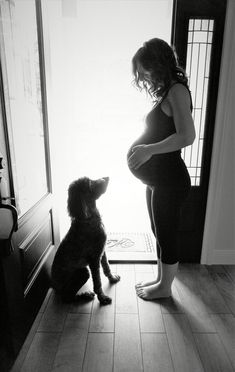 Maternity photo at home silhouette picture pregnant third trimester with dog pet puppy