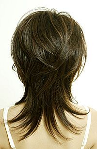 Most people think of thick hair as luxurious. Thin, fine hair is often seen as limp and unable to hold any particular style. But it is actually versatile and can be made to look most any way a pers… Medium Layered Hair, Medium Hair Cuts, Short Hair Cuts, Medium Hair Styles, Curly Hair Styles, Long Shag Hairstyles, Medium Shag Haircuts, Haircuts For Fine Hair, Haircut Medium