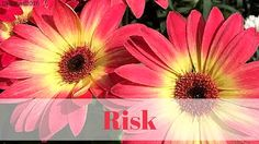 Smores & Sundresses ~ Risk