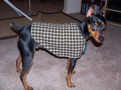 Tutorial for a dog coat - you need to scroll down for the pattern.