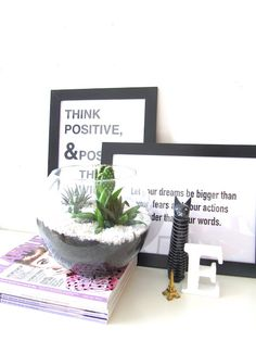 Mini Cactus Garden   DIY   mimiloves Mini Cactus Garden, Room Themes, Candles, Diy, Beauty, Scandinavian Design, Cactus, Clean Foods, Plants