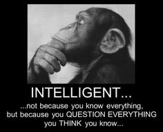 Interesting perspective on Intelligence