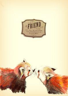 Red Panda Friends Art Print