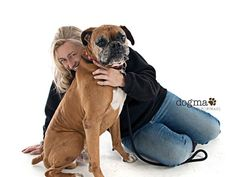 Give Cruz a Little Piece of Your Heart | Animal Rescue - YouCaring.com Boxer Rescue, Your Heart, Dog Stuff, Animal Rescue, Dogs, Animals, Animales, Animaux, Doggies