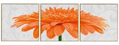 Peinture par numéros - Triptyque Chrysanthème - 40 x 120cm