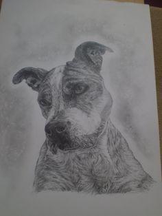 Dog Niki by mumuku.deviantart.com on @DeviantArt