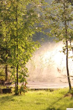 #foto #lake #morning #mist #finland #valokuvaus #järvi #aamu #sumu #suomi