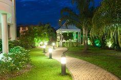 Wedding entrance. Theme Green nature.