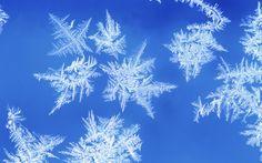 雪花与冰霜桌面壁纸