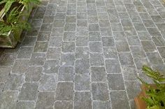 Grisaille Limestone Paving