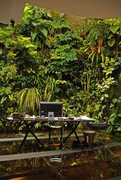 #jardin #vertical #area #trabajo #fantastico