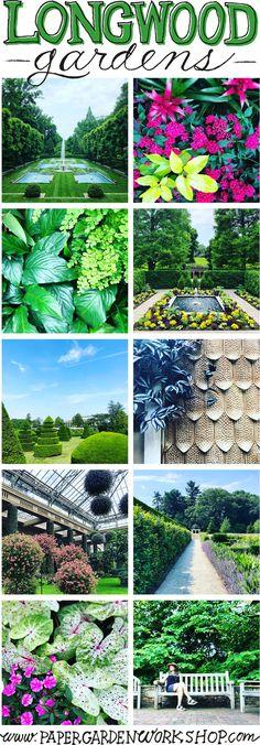 388 Best Landscape Design Images In 2020 Landscape Design