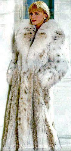 Luscious Lynx