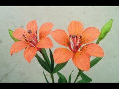 How To Make Wood Lily Paper Flower From Crepe Paper - Craft Tutorial - YouTube