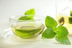 Comment se préparer une infusion de mélisse ? La mélisse est une plante herbacée vivace qui soulage bien des douleurs… L'infusion de mélisse est calmante et apaisante, c'est pourquoi elle est souvent utilisée en cas d'insomnie. Mais on la recommande également en cas de digestion difficile, de vertiges ou de stress. Une plante aux nombreuses vertus !
