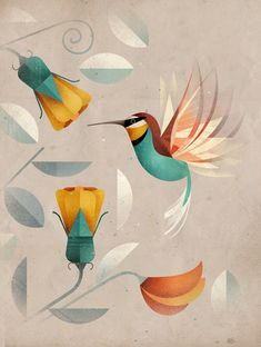 East End Prints - Hummingbird by Dieter Braun, £19.95 (http://www.eastendprints.co.uk/hummingbird-by-dieter-braun/)
