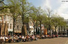 Plein, the heart of The Hague