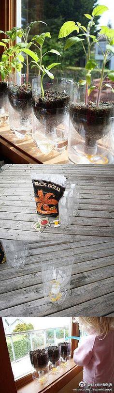 Art handmade DIY home design ideas flower pot recycling